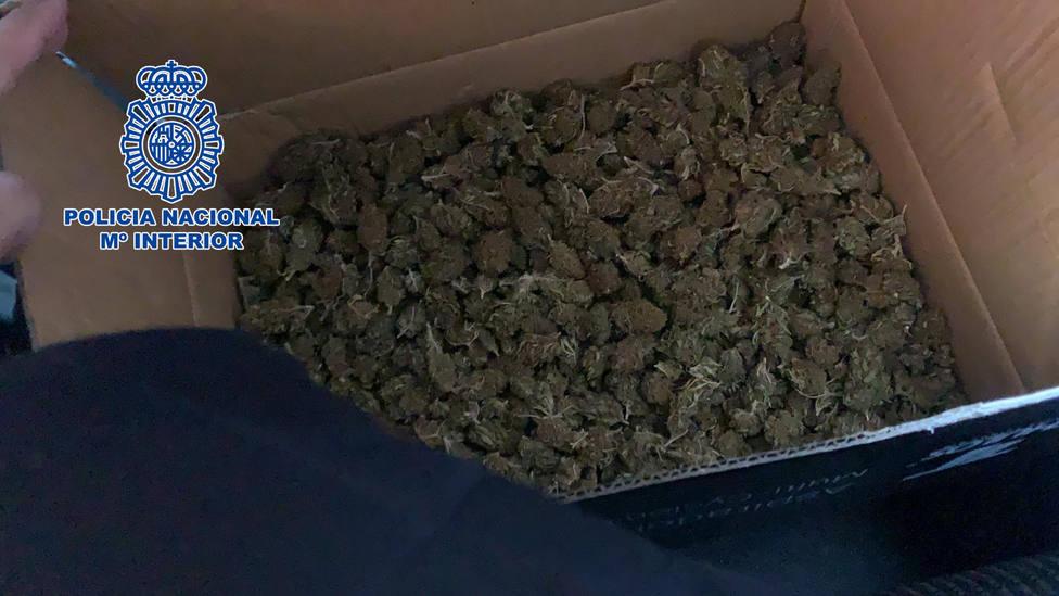 Detienen en Almería a dos hombres por enviar marihuana a Bélgica a través de una empresa de paquetería