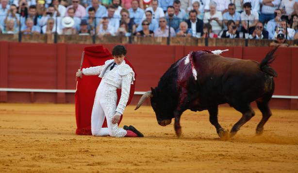 El PP acusa al Gobierno de querer acabar con el campo español al pretender prohibir los toros y la caza