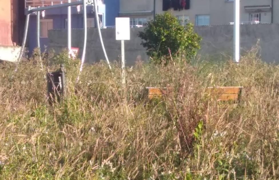 Estado que presentan algunas de las zonas de O Bertón - FOTO: Cedida