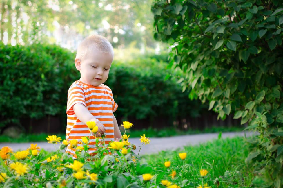 Vivir en la ciudad o en el campo podría determinar el peso de los bebés