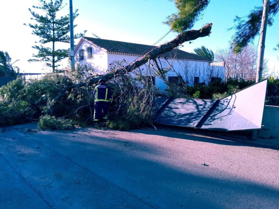 El Ayuntamiento de Lorca procede al cierre temporal de los parques y jardines municipales
