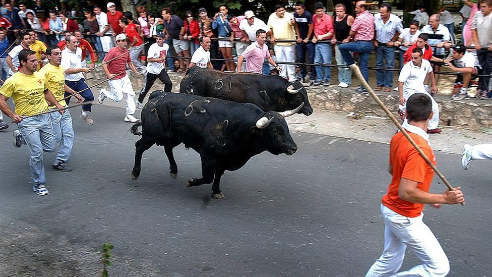 Encierro por las calles de la localidad alcarreña de Brihuega