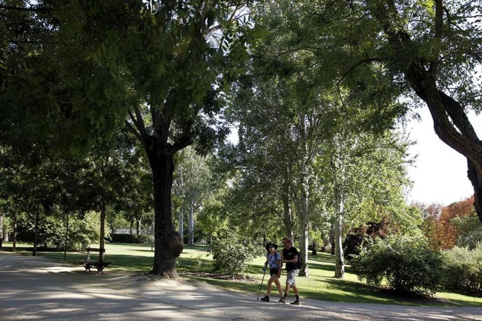 El Parque del Oeste de Madrid donde se produjo la agresión sexual a la joven de 16 años