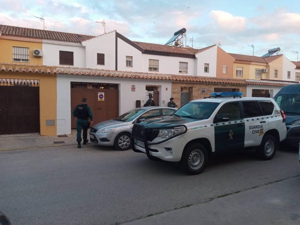Seis detenidos por plantación y tráfico de marihuana en La Algaida