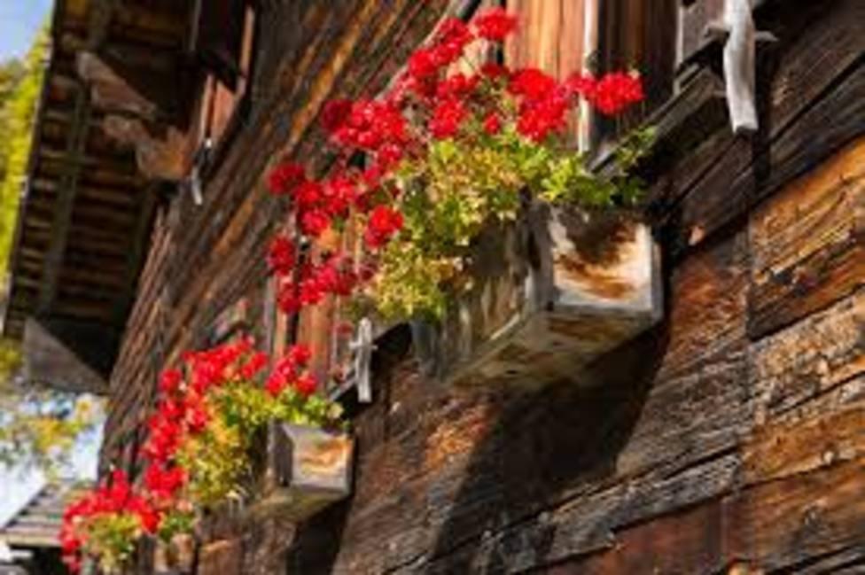 ctv-uak-flores-balcones