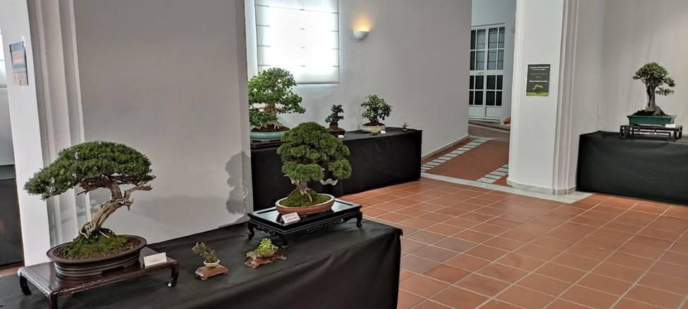 Un momento de la visita de Toñi Ledesma a la Casa de la Cultura que acogió la inauguración.