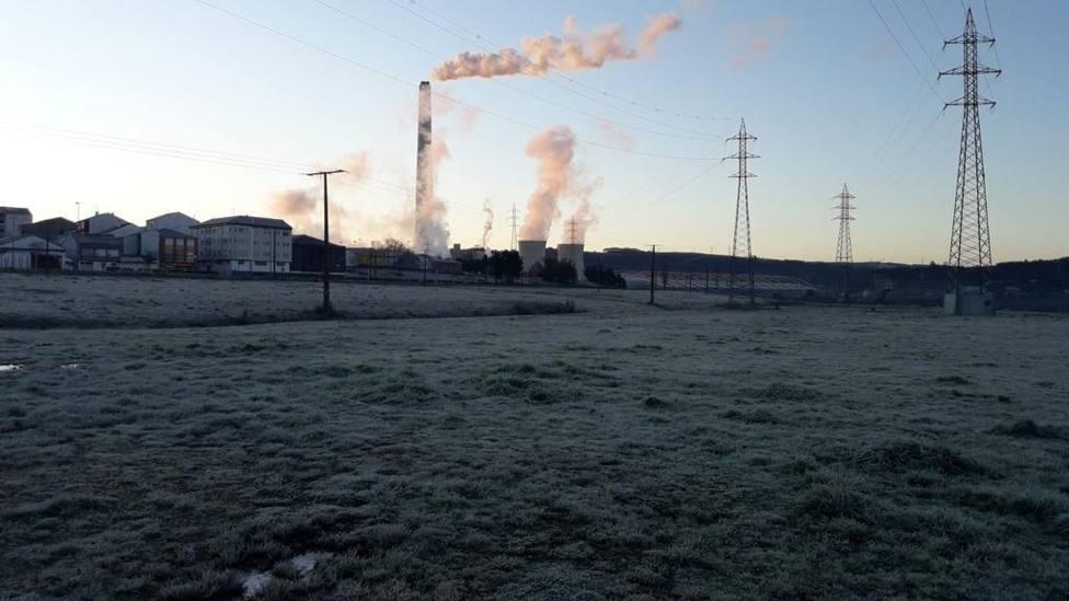 La bajada de temperaturas ha supuesto la necesidad de aumentar la producción - FOTO: Cedida