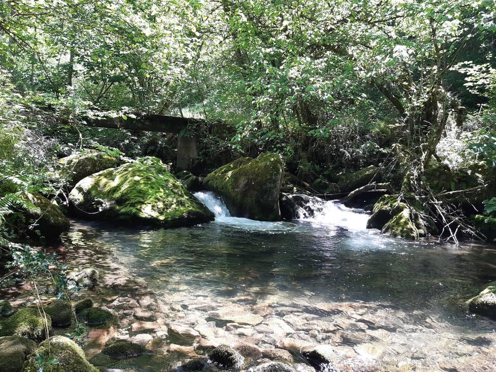 A lo largo de la ruta se suceden las cascadas y te acompaña el sonido del agua discurriendo por el río