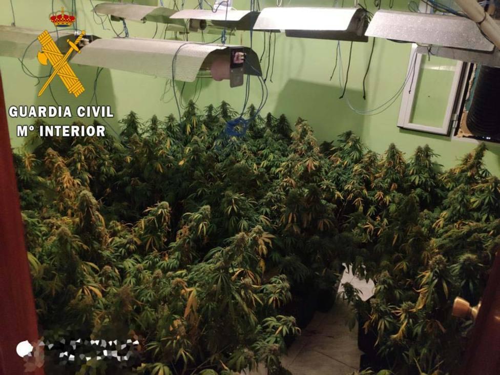 ctv-svr-marihuana-los-villares