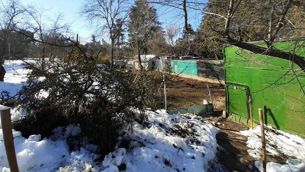 Quince voluntarios reconstruyen Brinzal, devastado por Filomena