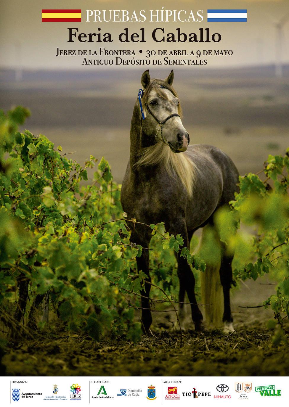 Éstos son los caballos que sí están de Feria en Jerez