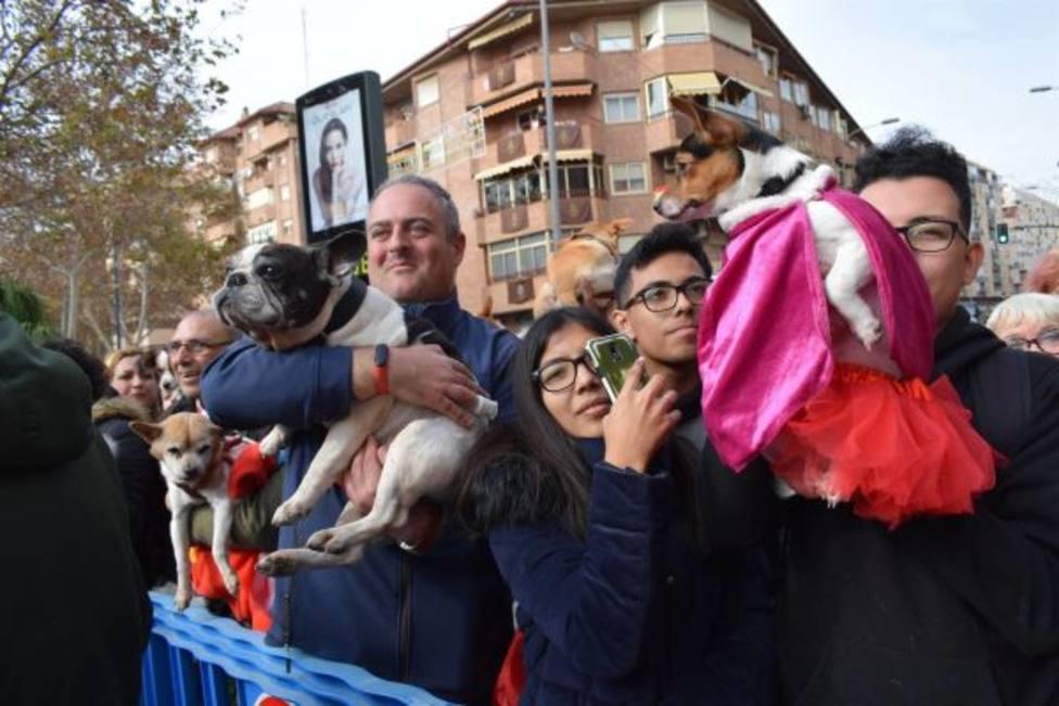 Suspendida la tradicional bendición de animales en San Antón