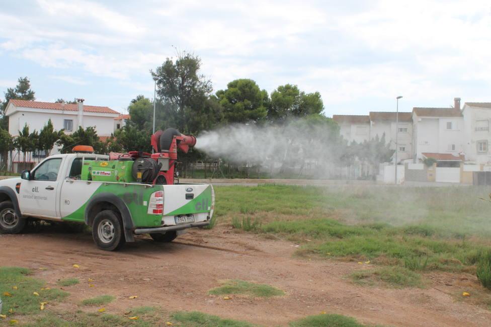 Fumigaciones contra los mosquitos en Benicàssim