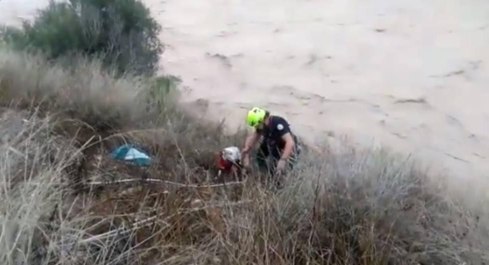 Rescatan a dos perros en Albaida y Xàtiva (Valencia) que habían quedado atrapados por las riadas