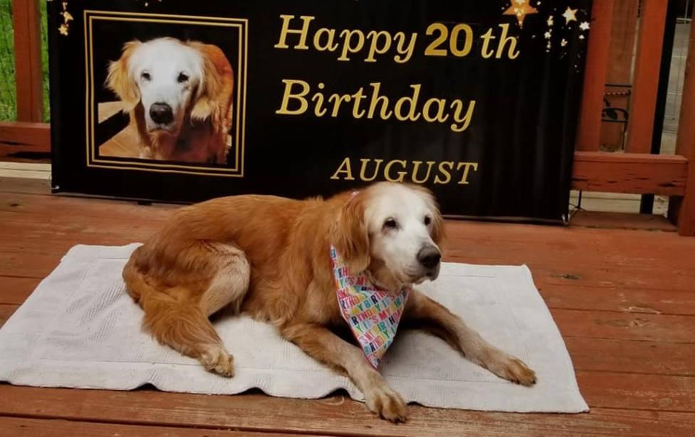 Augie ya tiene 20 años