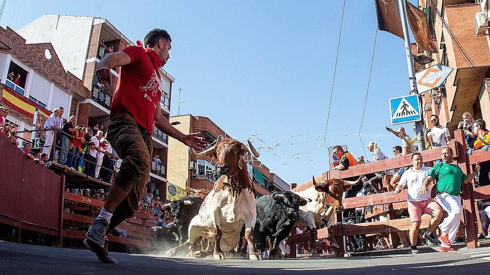 Encierro por las calles de la localidad madrileña de San Sebastián de los Reyes