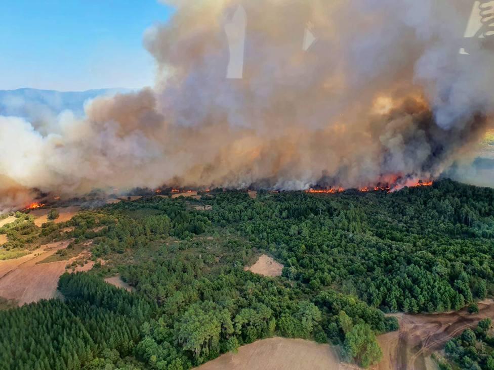 Extinguido el incendio que arrasó 465 hectáreas en Monforte