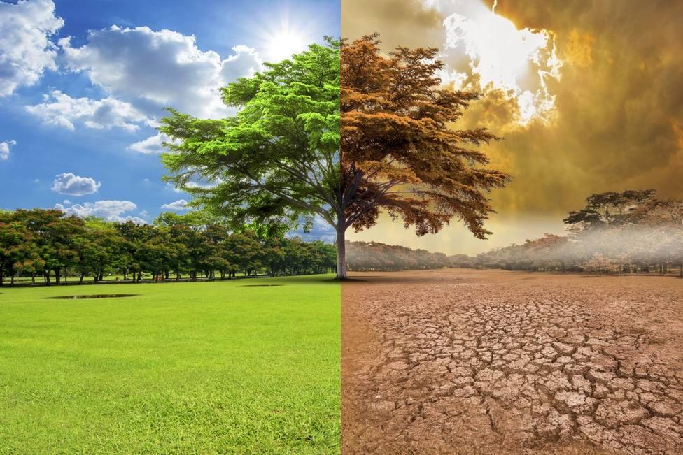 La Iglesia muestra su fortaleza en la lucha contra el cambio climático