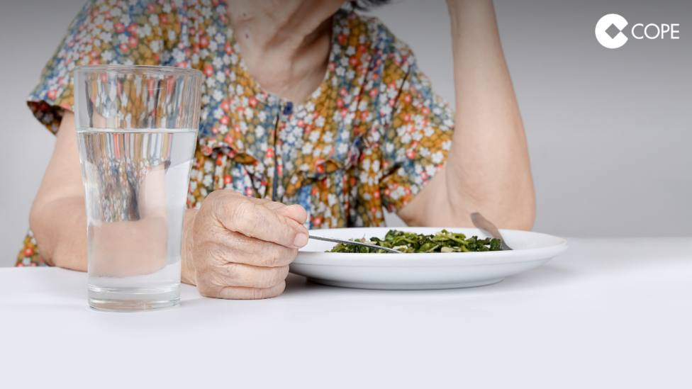 ctv-khe-luz-verde-a-la-modificacin-del-contrato-de-ayuda-a-domicilio-con-incremento-de-horas-de-prestacin-y-comidas