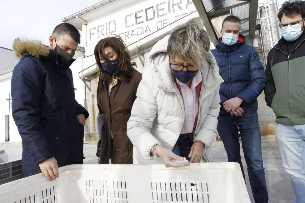 Rosa Quintana comprueba la calidad de hielo que produce la nueva máquina - FOTO: Xunta