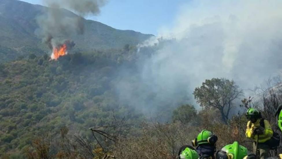 Extinguido el fuego en Estepona, que ha quemado 330 hectáreas desde el lunes