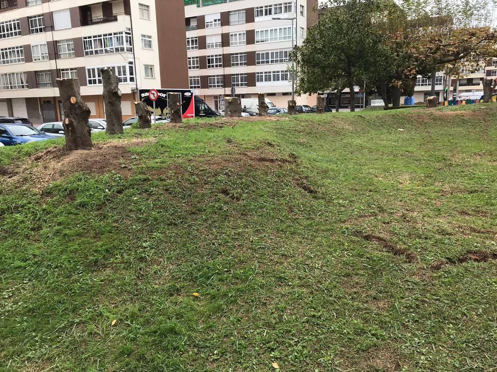 Zona de San Valentín en donde se procedió a cortar los árboles - FOTO: PP de Fene