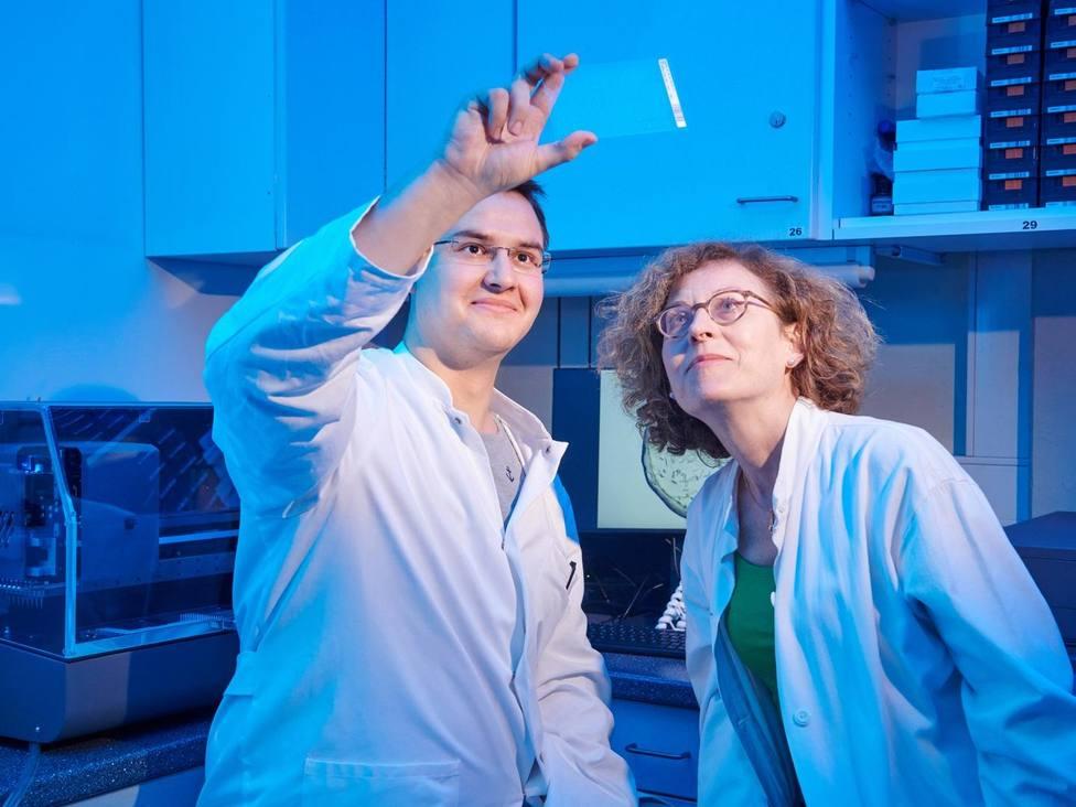 Descubren el mecanismo de unión de un importante receptor de dolor