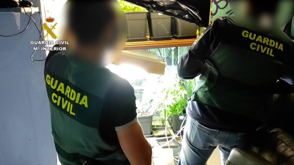 La investigación fue llevada a cabo por la Guardia Civil