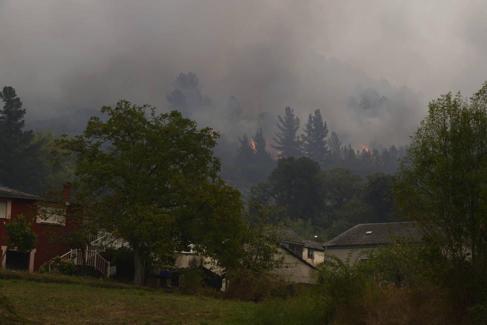 El fuego de Ribas de Sil ha arrasado ya más de 700 hectáreas