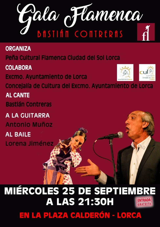 """Gala """"Flamenco Ciudad del Sol """""""