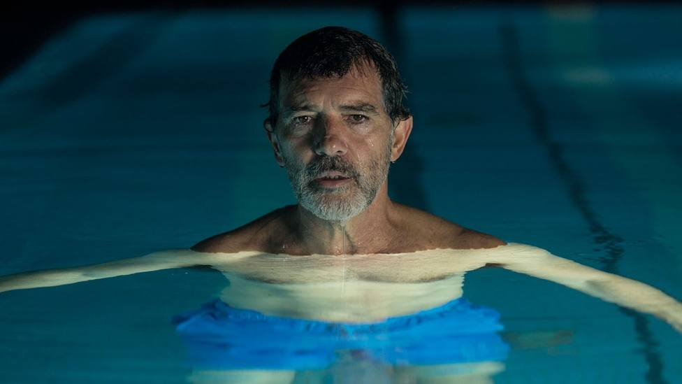 Almodóvar aspira a cuatro galardones en los Premios de Cine Europeo que se entregarán mañana
