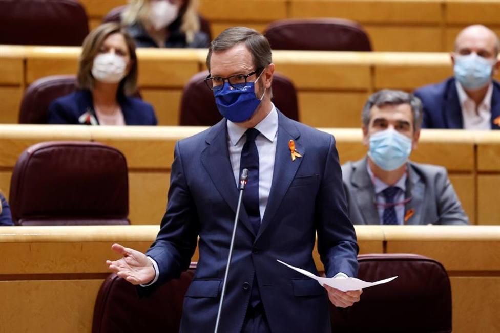 El portavoz del PP en el Senado Javier Maroto