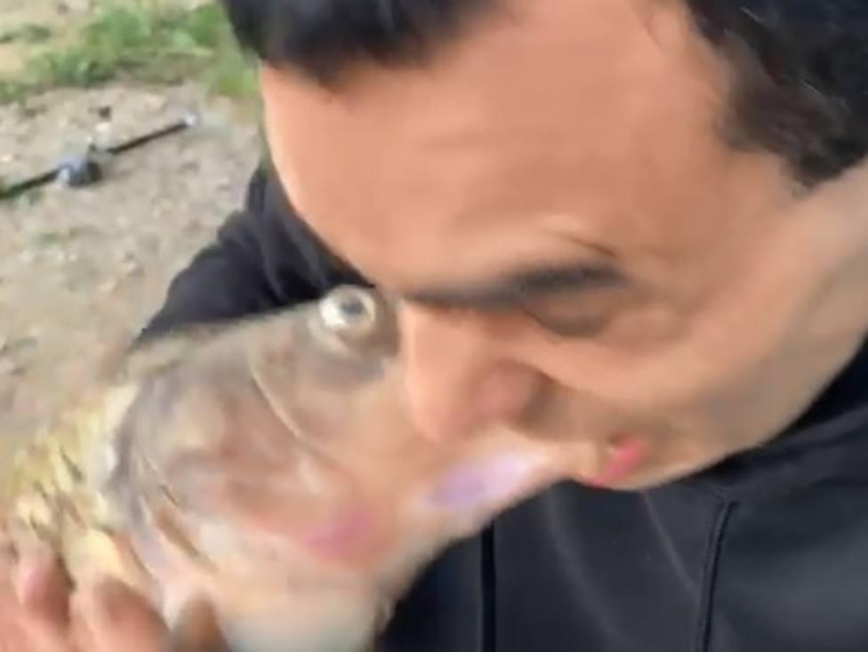 Monstruos en el río: Maltrato animal a orillas del Ebro