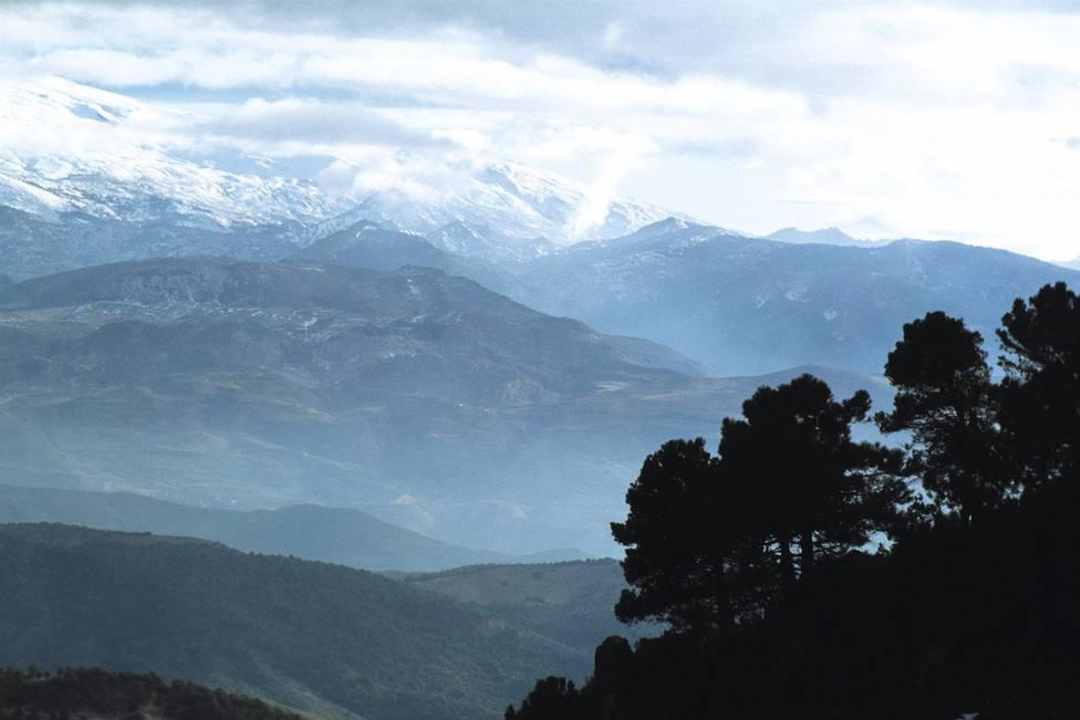 La Junta organiza actividades en espacios protegidos para difundir el patrimonio ambiental de Andalucía