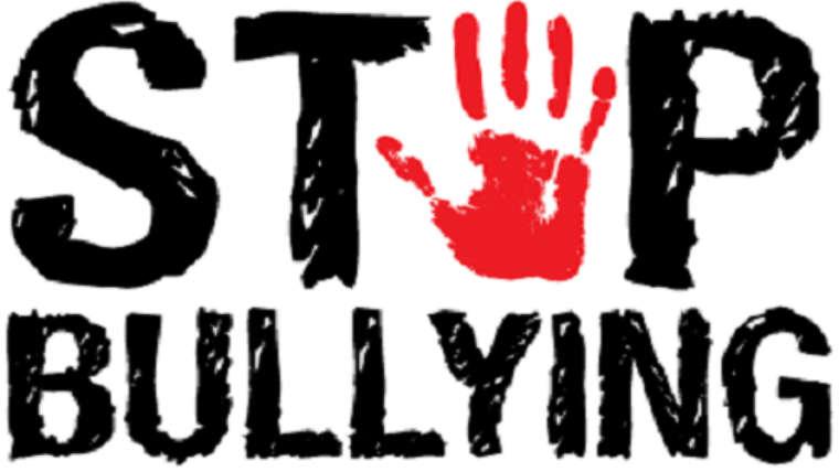 """La Asociación Tolerancia 0 al bullying pide que """"se visibilizen"""" todos los casos de acoso escolar"""