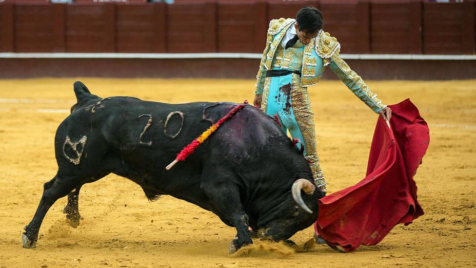 Natural de Saúl Jiménez Fortes al primer toro de Cuvillo este viernes en Málaga