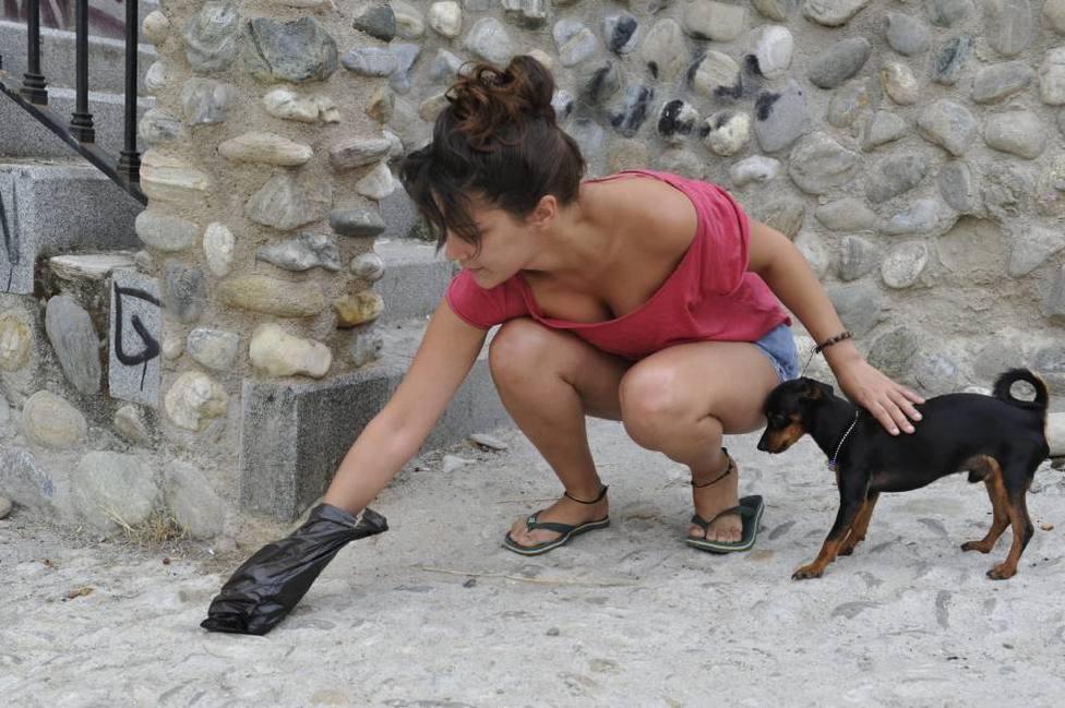Campaña heces de perro
