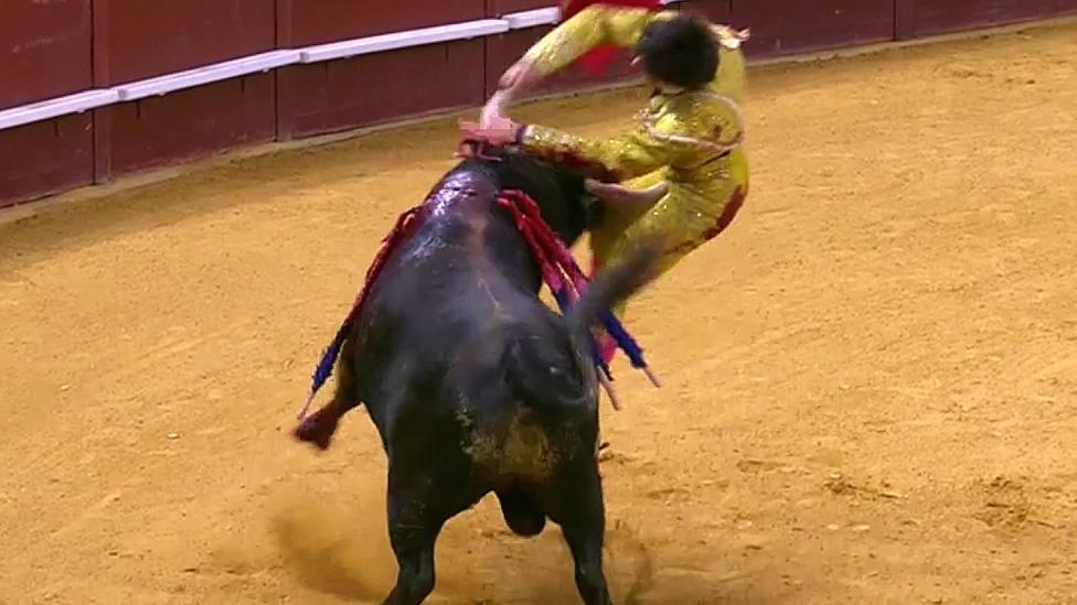Momento de la grave cornada que sufrió Manuel Perera en el Palacio Vistalegre