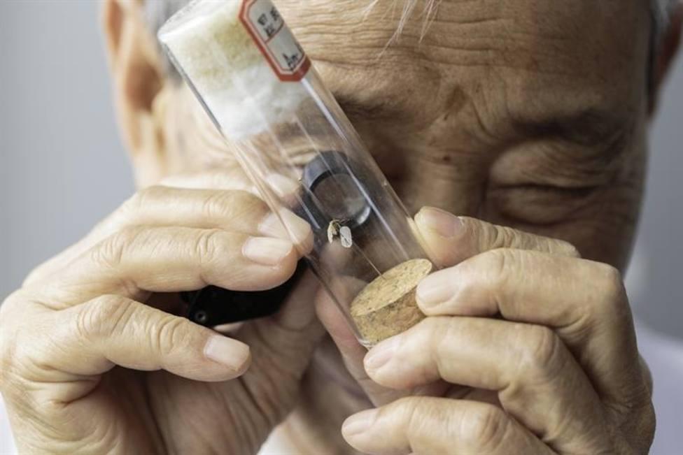China y El Salvador podrían eliminar oficialmente la malaria en 2020, según la OMS