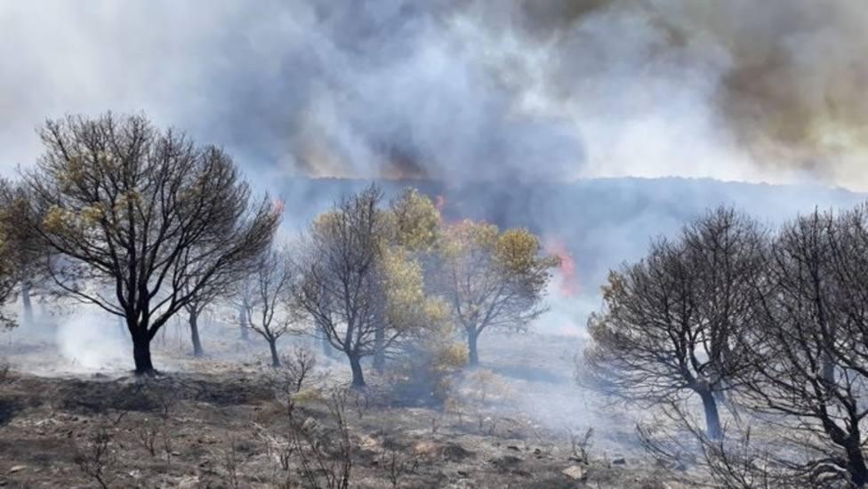 Al menos 53 personas heridas por los fuertes incendios en el sur de Turquía