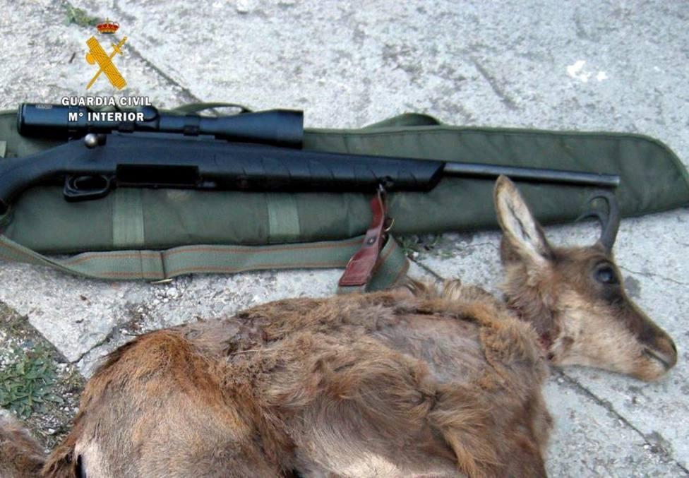 Investigados cuatro furtivos por la caza de rebecos en Picos de Europa