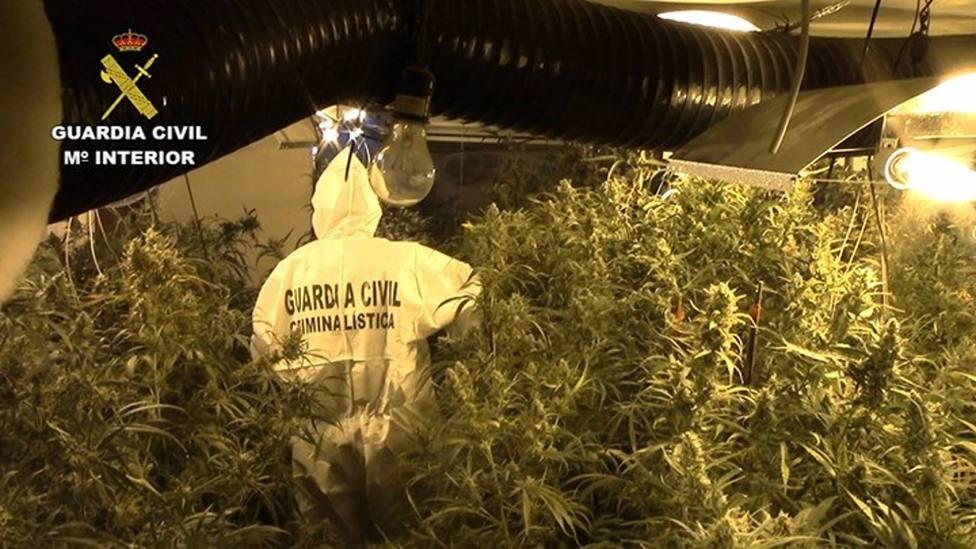 Operación contra el tráfico de drogas de la Guardia Civil