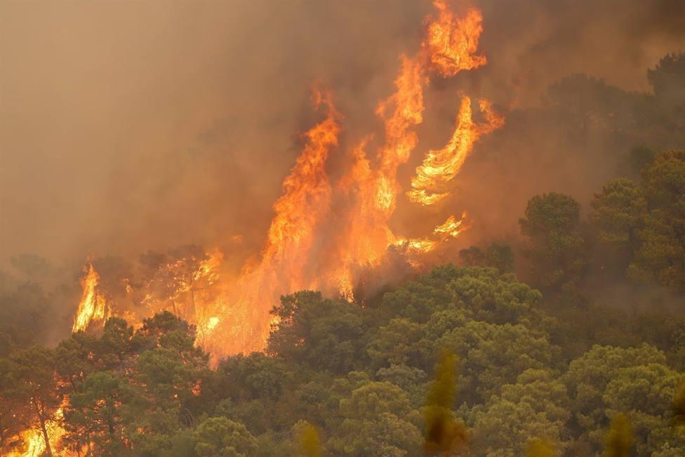 Roquetas de Mar traslada su pésame a la familia del bombero fallecido en Sierra Bermeja, de donde era vecino