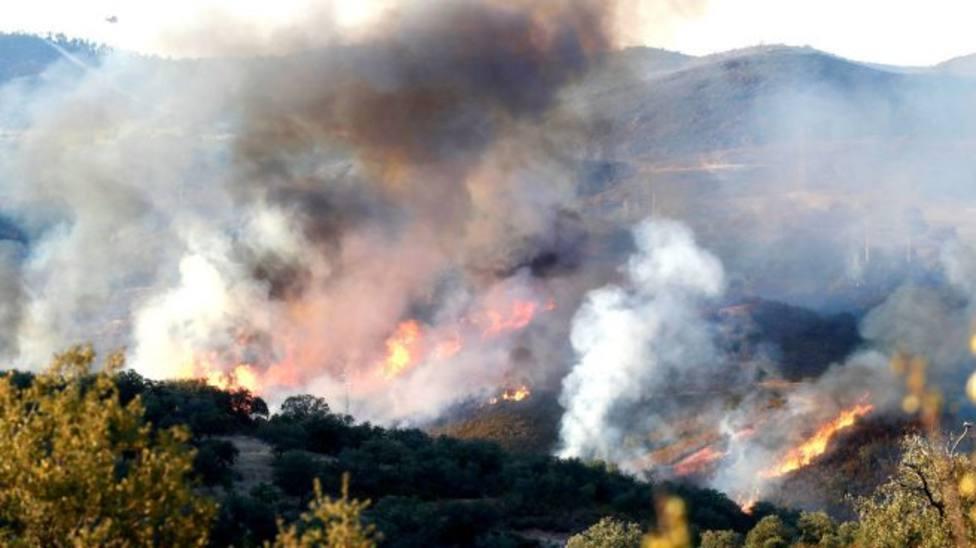 Estabilizado el incendio de El Madroño (Sevilla) y los desalojados vuelven a sus casas