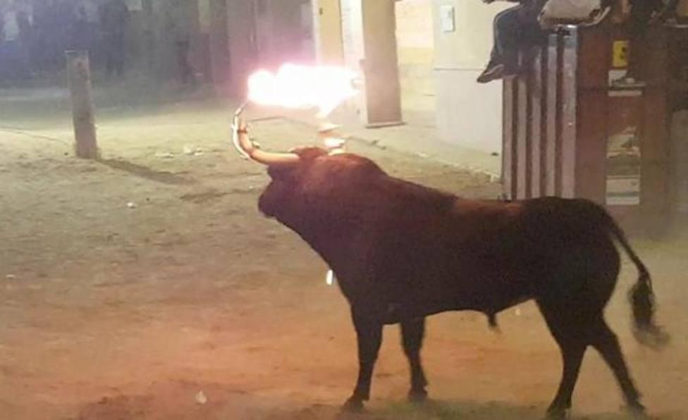 Jornada sobre el toro embolado en Vila-real