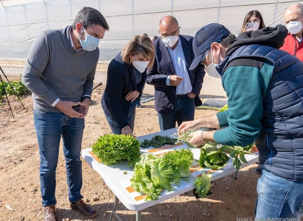 Investigan nuevas variedades hortícolas para hacer frente al cambio climático