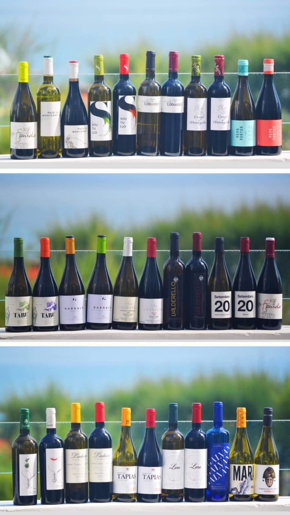 Diecisiete bodegas de Monterrei mostraron sus vinos en Santander