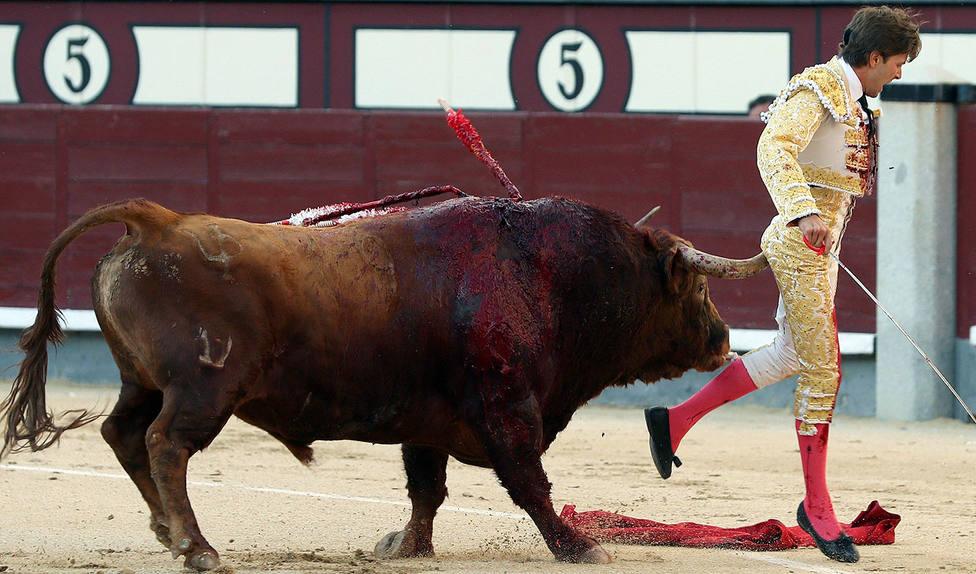 Momento de la cornada a Juan Leal sufrida este sábado en la plaza de Las Ventas