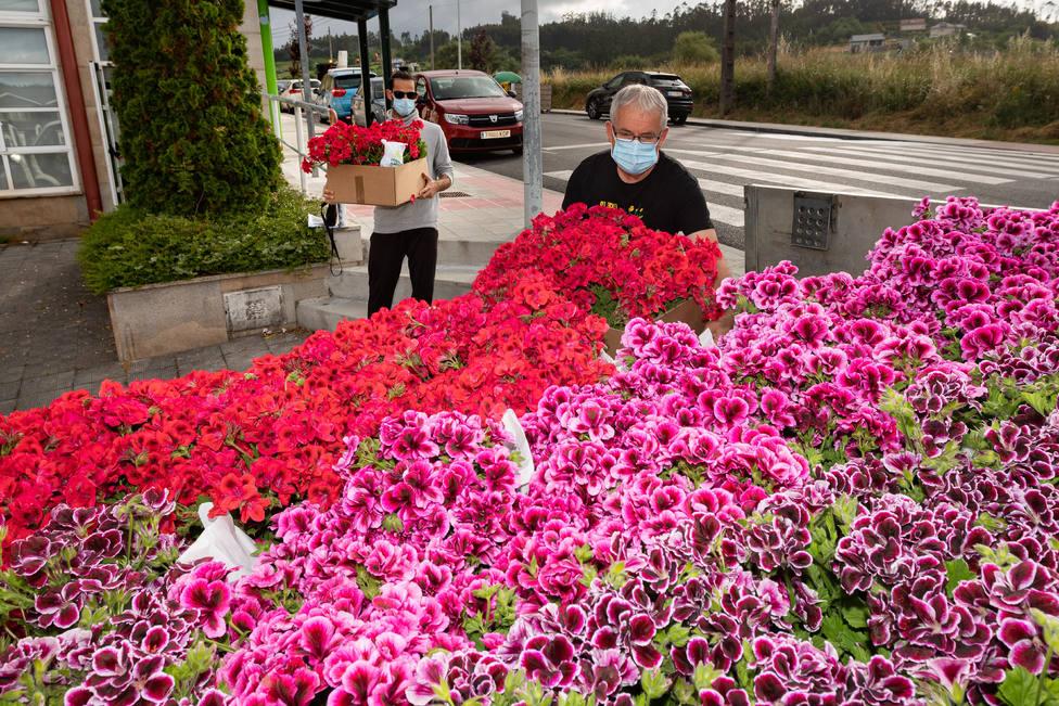 Recepción de flores para la iniciativa que cuenta con más de un centenar de participantes - FOTO: César Galdo