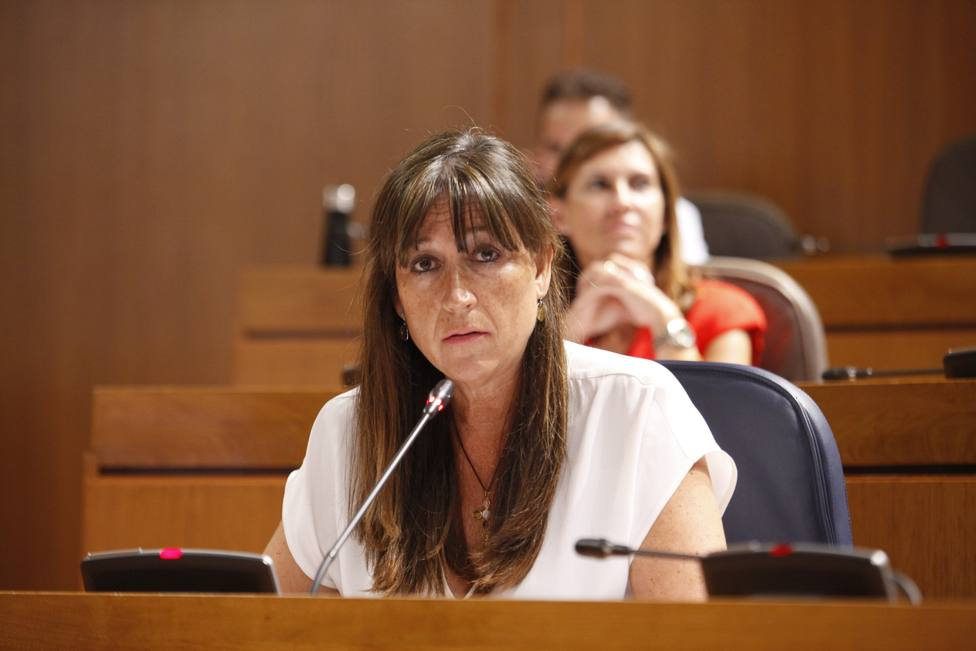 El Gobierno de Aragón pide a los zaragozanos que no salgan de la ciudad